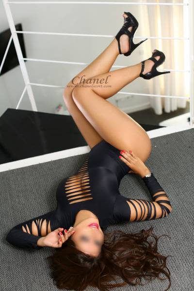 escort latina fotos y video en mi web