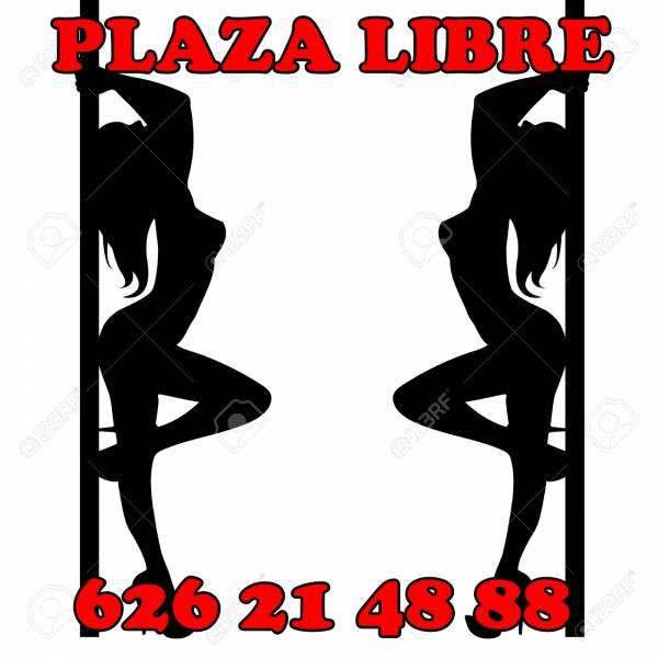 GANA DINERO HOY MISMO! PLAZAS LIBRES, CHALET DE LUJO EN MADR