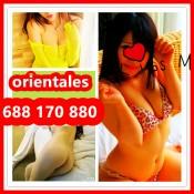 4 CHICAS MASAJES PARA TODOS 24H SALIDAS 688 170 880 68817088