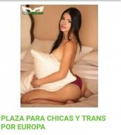 PLAZA PARA CHICAS Y TRANS POR EUROPA 623431036